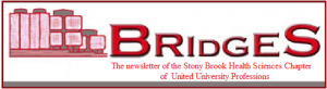 Bridges newsletter icon