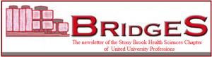 Bridges newsletter icon